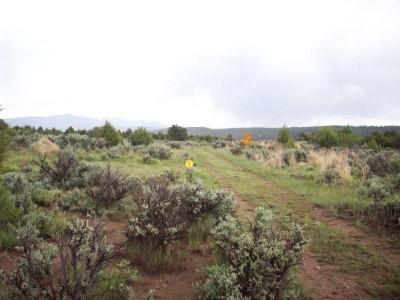 Picuris Pueblo DGC, Main course, Hole 11 Long tee pad