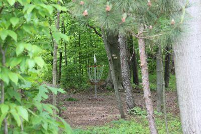 Leprechaun Hollows, Main course, Hole 6 Short approach