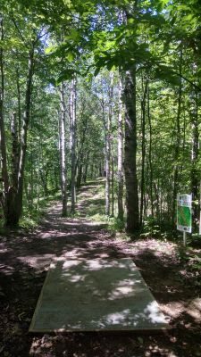 Northend Riverside Park, West course, Hole 12 Long tee pad