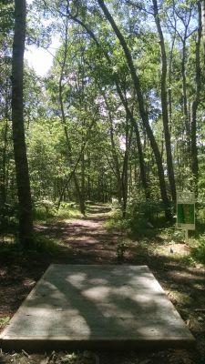 Northend Riverside Park, West course, Hole 10 Long tee pad