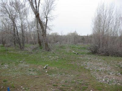 Riverpark, Main course, Hole B Short tee pad