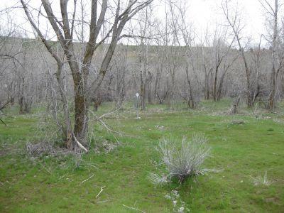 Riverpark, Main course, Hole E Putt