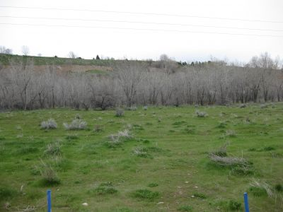 Riverpark, Main course, Hole E Short tee pad
