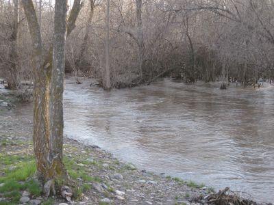 Riverpark, Main course, Hole 9 Short approach