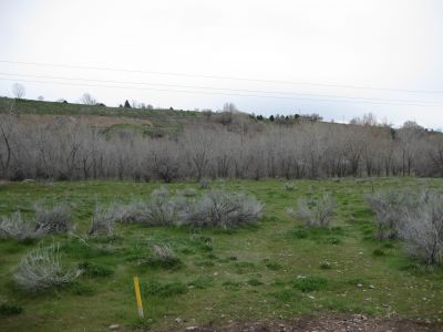 Riverpark, Main course, Hole E Middle tee pad
