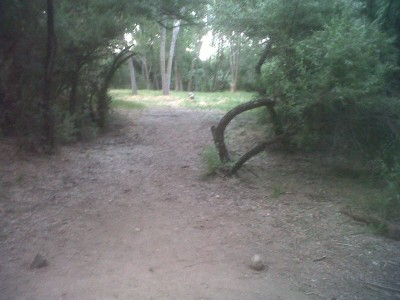 Creekside Park, Main course, Hole 3A Tee pad