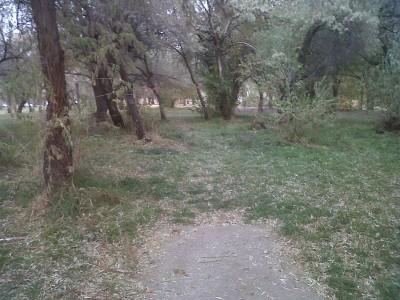 Creekside Park, Main course, Hole 13 Short tee pad
