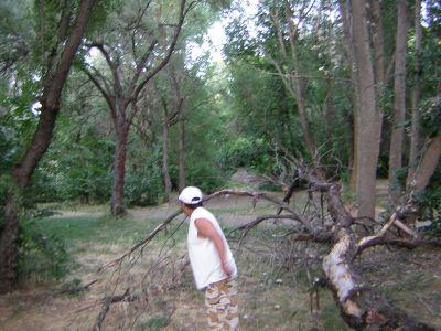 Creekside Park, Main course, Hole 13 Long tee pad