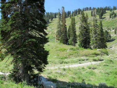 Solitude Mountain Resort, Main course, Hole B Long approach