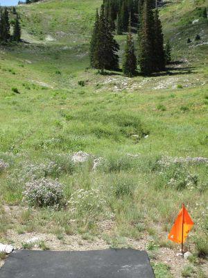 Solitude Mountain Resort, Main course, Hole D Tee pad