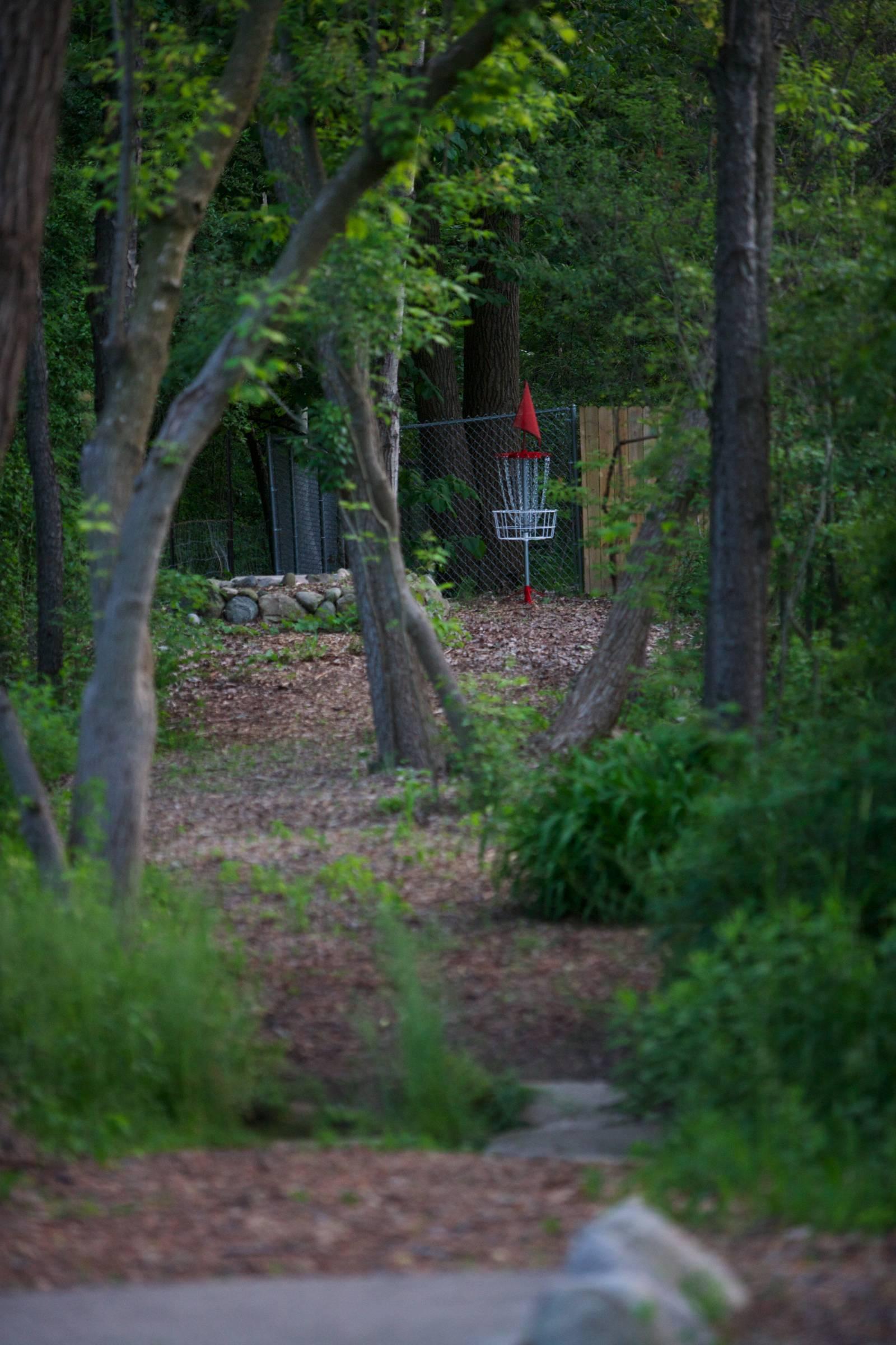 Hole 4 • Three Acres Park (Byron Center, MI) | Disc Golf ...