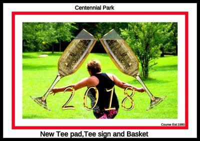 Centennial Park, Ontario Course, Hole 14 Short tee pad