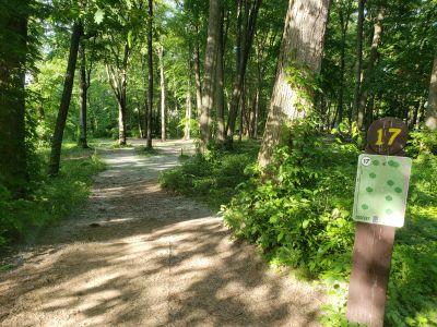 Jaycee Park, Main course, Hole 17 Tee pad