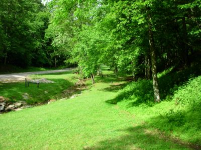 The Mountwood Monster, Main course, Hole 5 Alternate pin