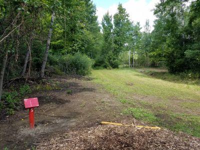 Oakwood Lake Park, Dogmans Den, Hole 5 Tee pad