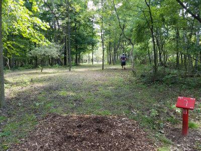 Oakwood Lake Park, Dogmans Den, Hole 11 Tee pad
