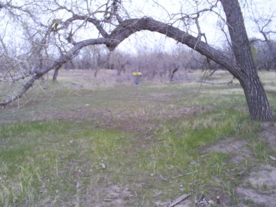 Casper DGC, Main course, Hole 16 Putt