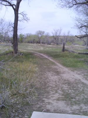 Casper DGC, Main course, Hole 4 Tee pad