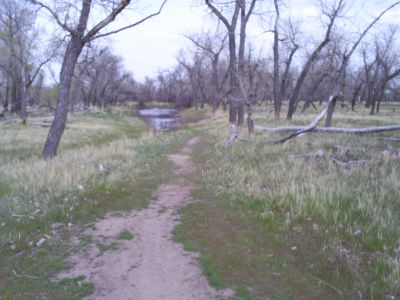 Casper DGC, Main course, Hole 18 Tee pad