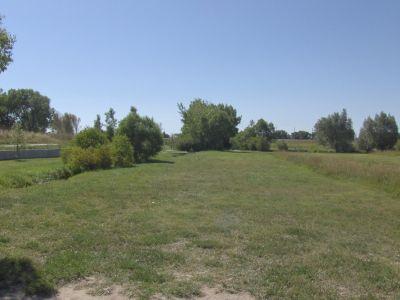 Dry Creek Parkway, Main course, Hole 7 Long tee pad