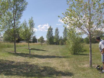 Dry Creek Parkway, Main course, Hole 2 Long tee pad