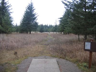 Farragut State Park, North Star, Hole 8 Tee pad