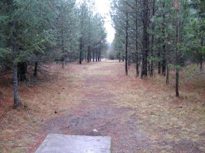 Farragut State Park, North Star, Hole 17 Tee pad