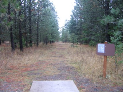 Farragut State Park, North Star, Hole 16 Tee pad