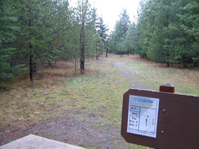 Farragut State Park, North Star, Hole 2 Tee pad