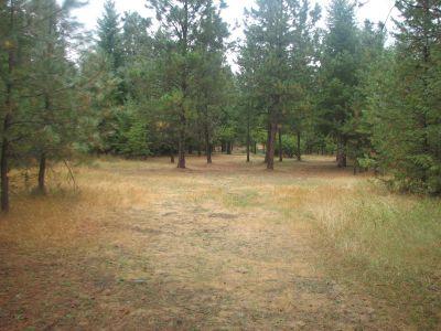 Farragut State Park, Wreckcreator, Hole 2 Tee pad