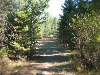 Farragut State Park, Wreckcreator, Hole 7 Tee pad