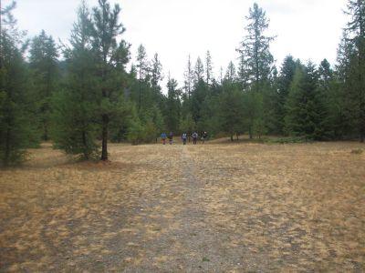 Farragut State Park, Wreckcreator, Hole 4 Tee pad