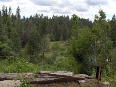 Bogus Basin, Pioneer Lodge, Hole 6 Tee pad