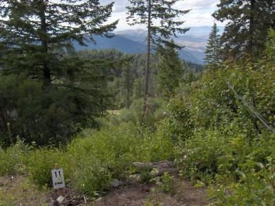 Bogus Basin, Pioneer Lodge, Hole 11 Tee pad