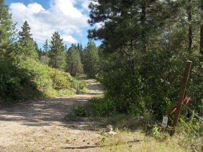 Bogus Basin, Pioneer Lodge, Hole 13 Tee pad