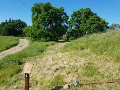 B.T. Collins Park, Main course, Hole 4 Tee pad