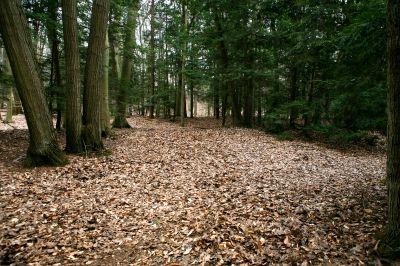 Nestrom Road Park, Fruitland Township DGC, Hole 11 Tee pad
