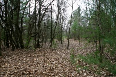 Nestrom Road Park, Fruitland Township DGC, Hole 16 Long approach