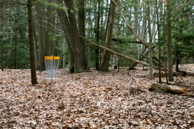 Nestrom Road Park, Fruitland Township DGC, Hole 9 Short approach