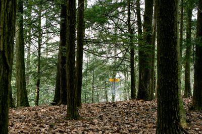 Nestrom Road Park, Fruitland Township DGC, Hole 8 Short approach
