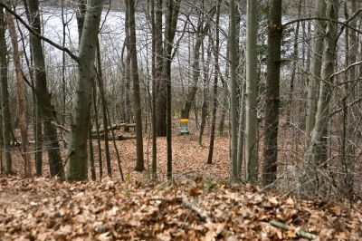 Nestrom Road Park, Fruitland Township DGC, Hole 1 Tee pad