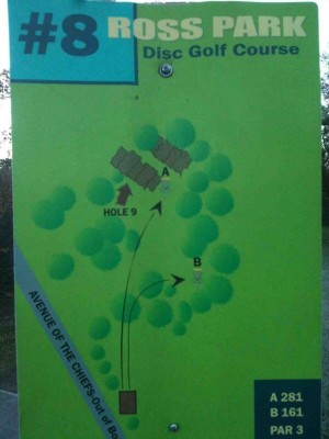 Upper Ross Park, Main course, Hole 8 Tee pad