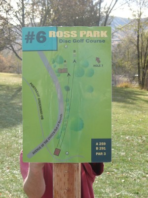 Upper Ross Park, Main course, Hole 6