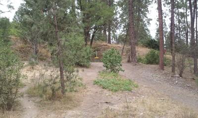 Corbin Park, Main course, Hole 6 Long approach
