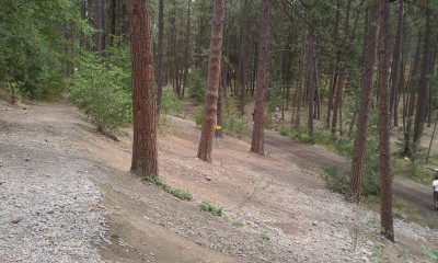 Corbin Park, Main course, Hole 7 Midrange approach