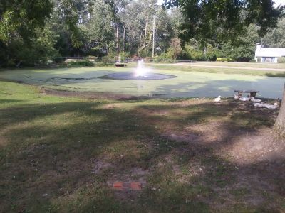 Putters Only, Main course, Hole 5 Tee pad