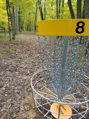 Sandy Knoll County Park, Main course, Hole 8 Reverse (back up the fairway)
