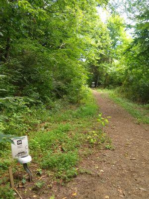 Cane Ridge Park, Short course, Hole 8 Tee pad