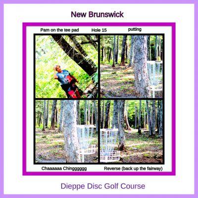 Lakeburn, Disc Golf Dieppe, Hole 15 Tee pad