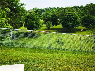 Rochester City Park, Main course, Hole 14 Tee pad